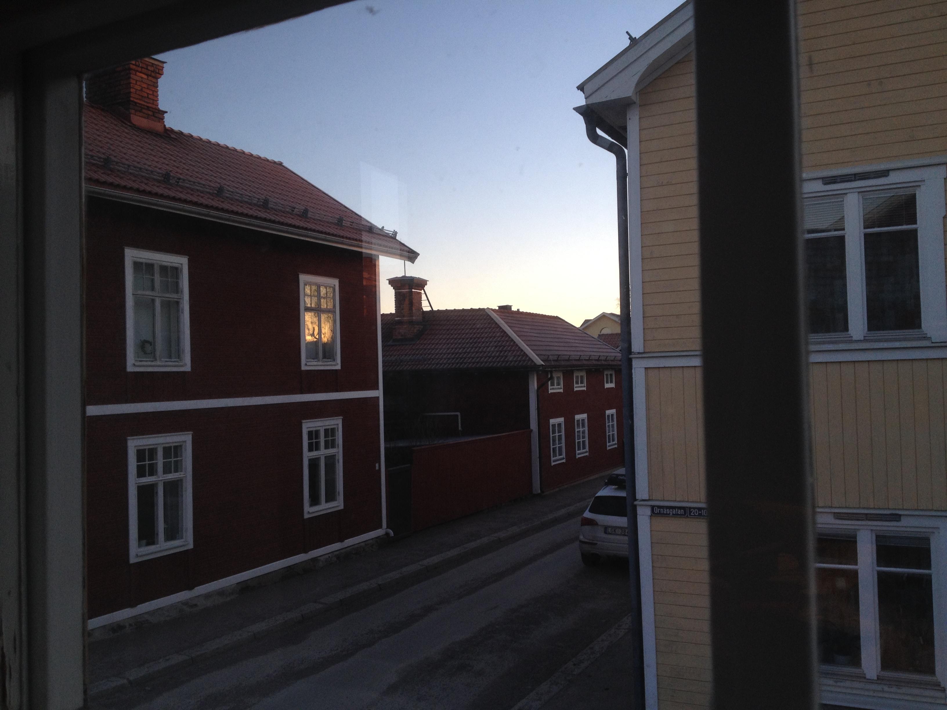 Utsikt från det blommiga rummet i Kopparstugan
