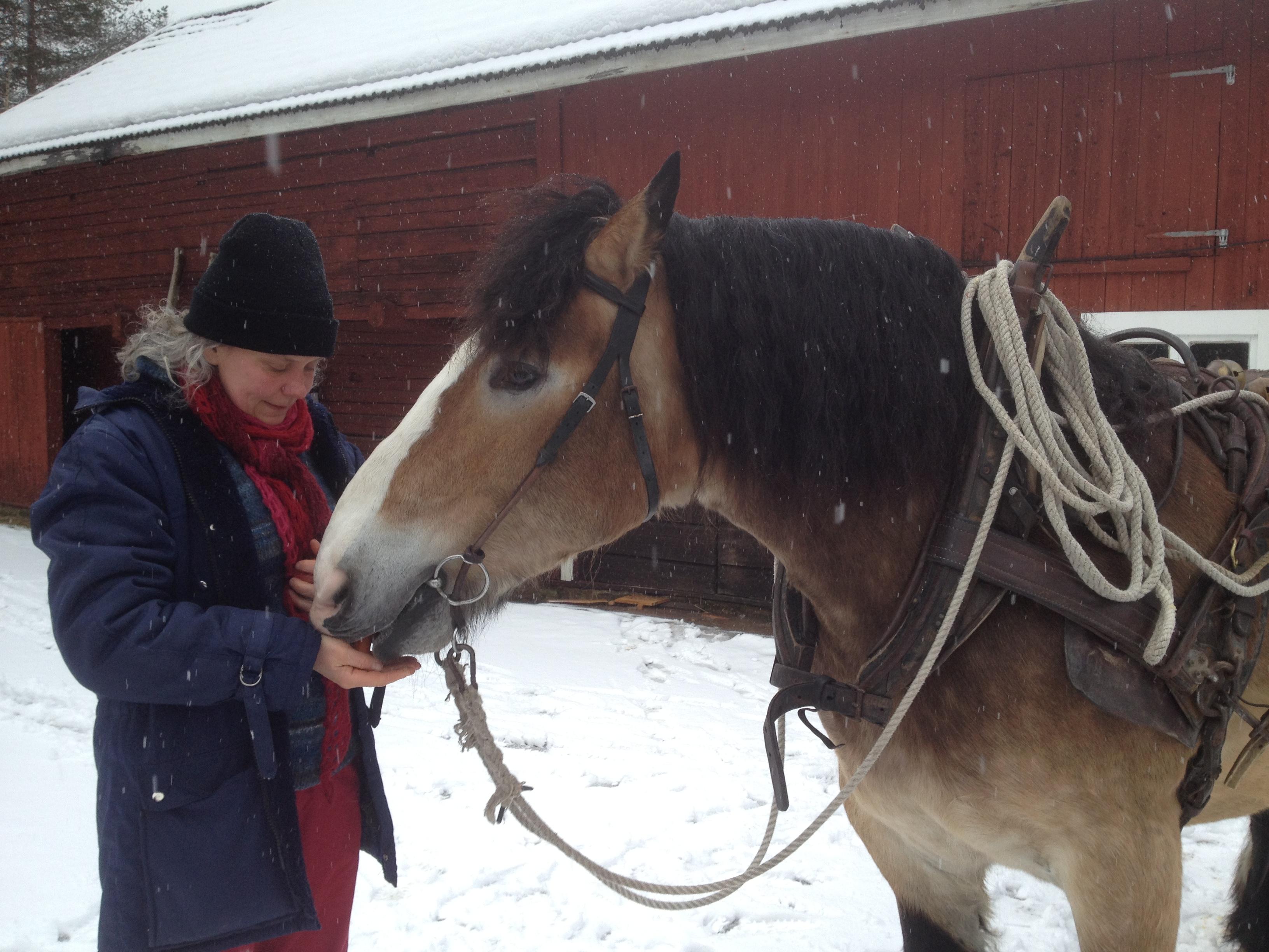 Tini matar Julle med äpplen och morötter