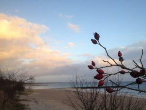 Strandpromenaden lillejuleafton