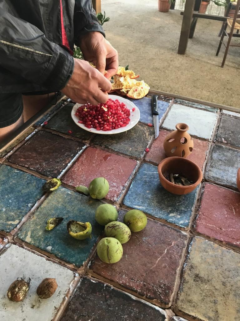 Vi kunde inte fått en bättre frukost. Vindruvor, granatäpple, valnötter, hasselnötter och mandel odlade på gården. Som alltid dricker vi bara vatten till frukost.