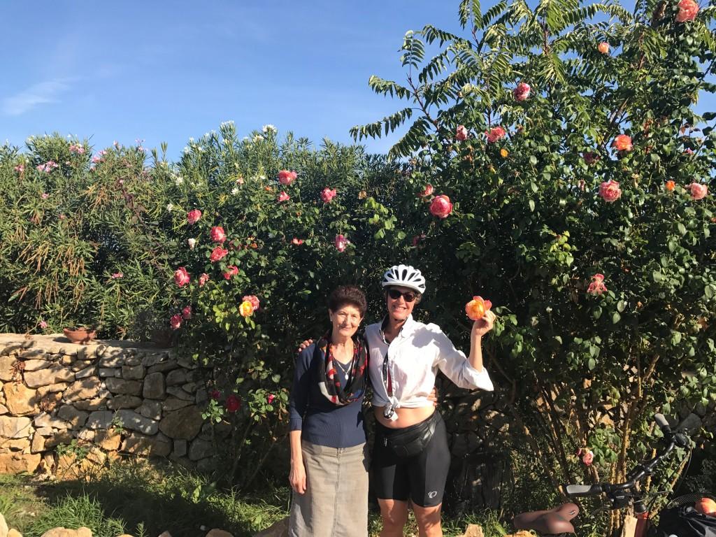 """""""Farmor"""" berättade (med teckenspråk) att hon själv planerat dessa imponerande rosor. Ett besök hos familjen Molino kan varmt rekommenderas!"""