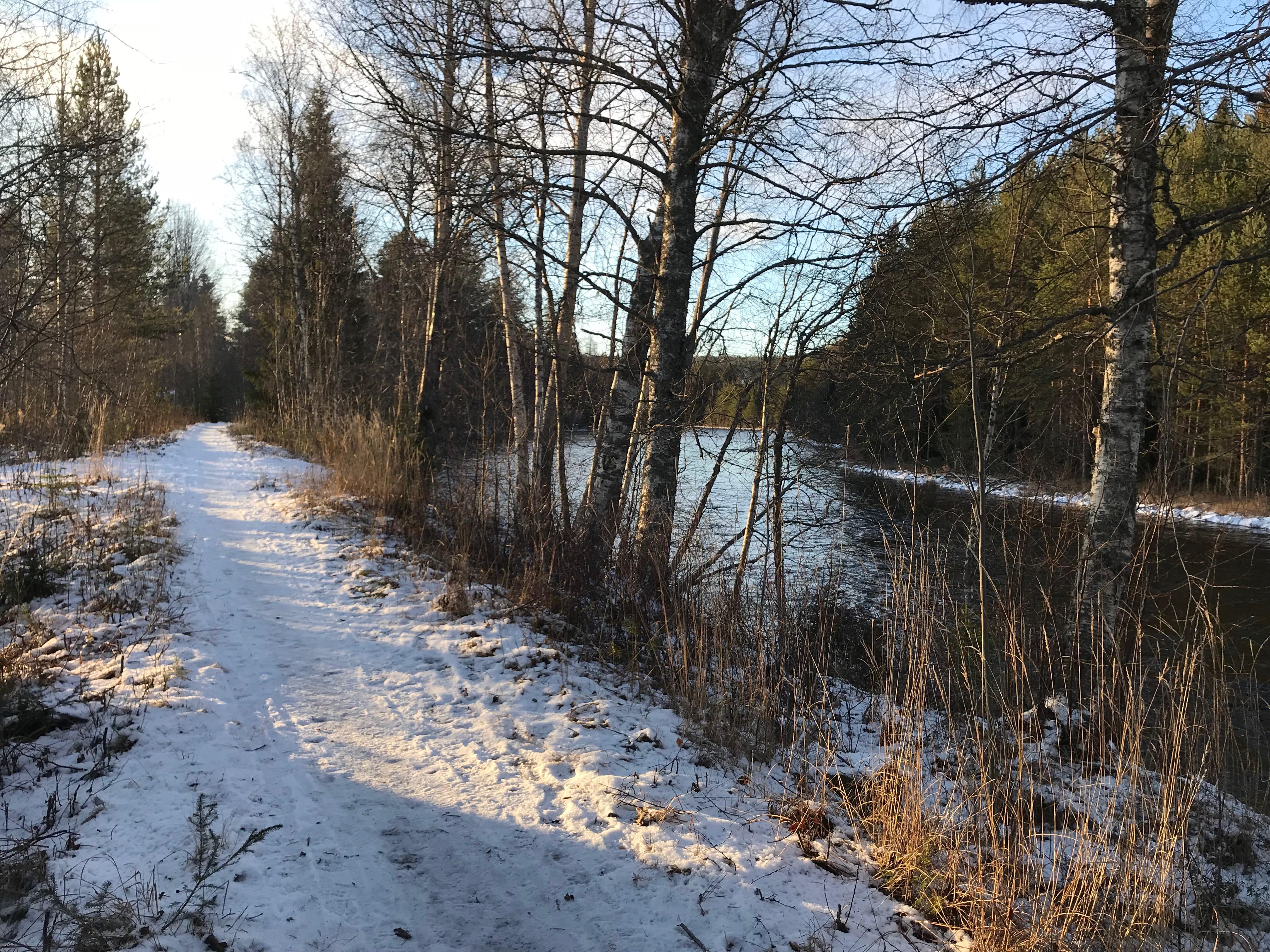 Stigen längs Älven (lättast att hitta från Campingen där den löper åt båda håll.)